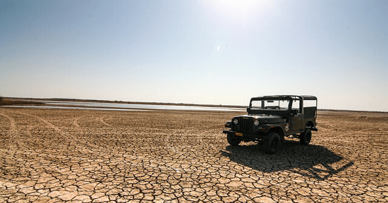 Jeep announces it next trail to the Rann of Kutch
